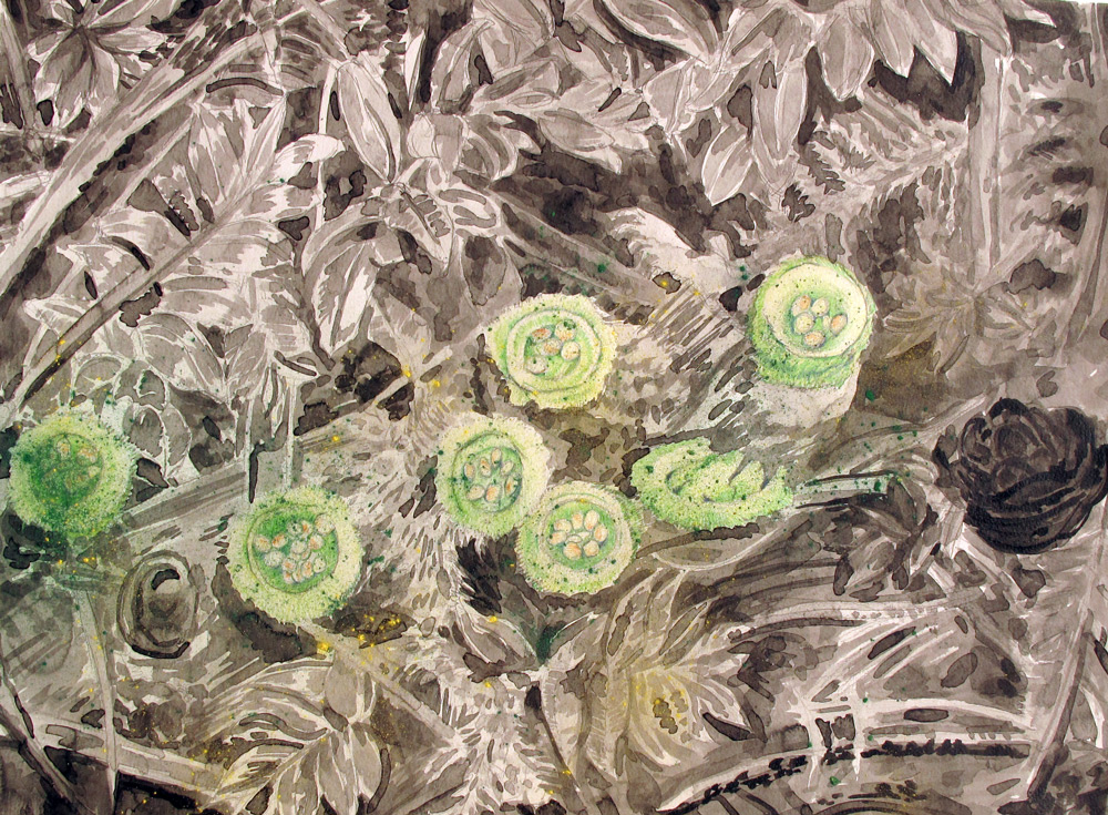 Birdsnest Mushrooms,24 x 18, 2013, Watercolor and Pigment Dust and Acrylic on Paper
