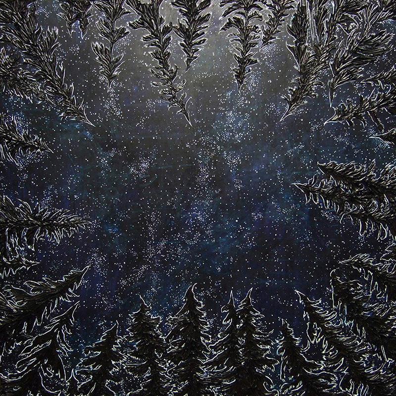 Bariloche, 48 x 48, 2010, acrylic and silicone caulking on wood - In the collection of the Oregon Department of Forestry, John Day, OR.<br><a href=&#039;http://eventuals.bandcamp.com/album/trunk&#039; target=&#039;_blank&#039;>Album Artwork</a>