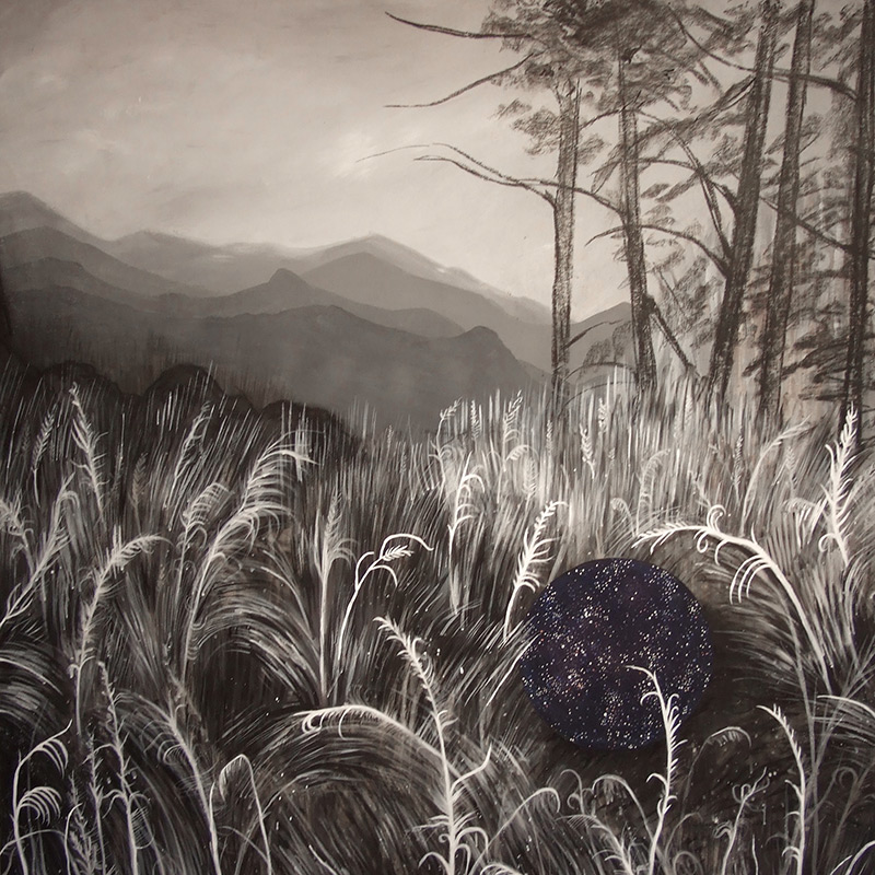 Warm Springs, 48 x 48, 2011, charcoal and acrylic on wood.<br>